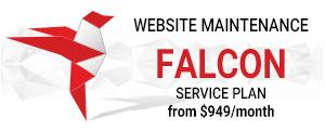 Falcon Service Plan